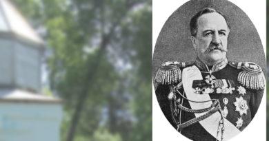 ИЛЛАРИОН ИВАНОВИЧ ВОРОНЦОВ-ДАШКОВ
